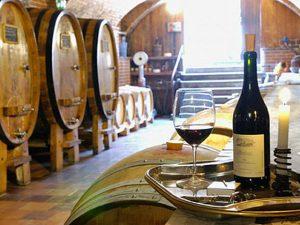 Фестиваль вина в Таборе. Чехия