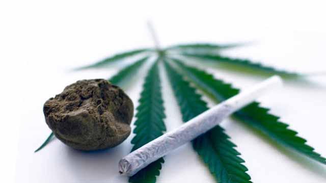 Marihuana Konopla Новости Чехии наркотики