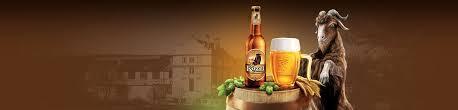 Pivo Velkepopovicky Kozel День «Козла» пиво Чехия