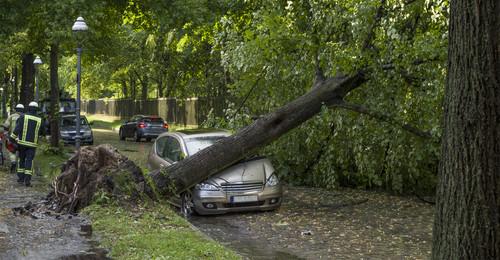 Uragan 2017 Новости Чехии ураган