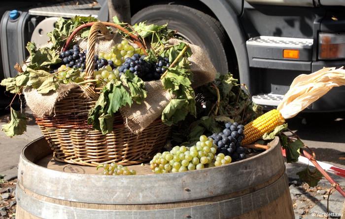 Vinobrani праздник молодого вина